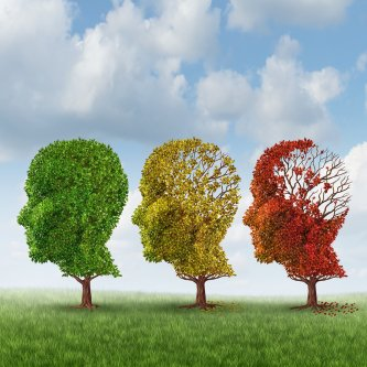 The Stages of Alzheimer's Disease